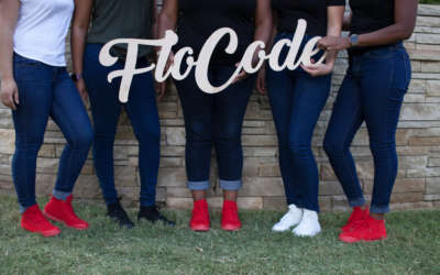 Guest Post: A Conversation with Lamanda Ballard from Flo Code